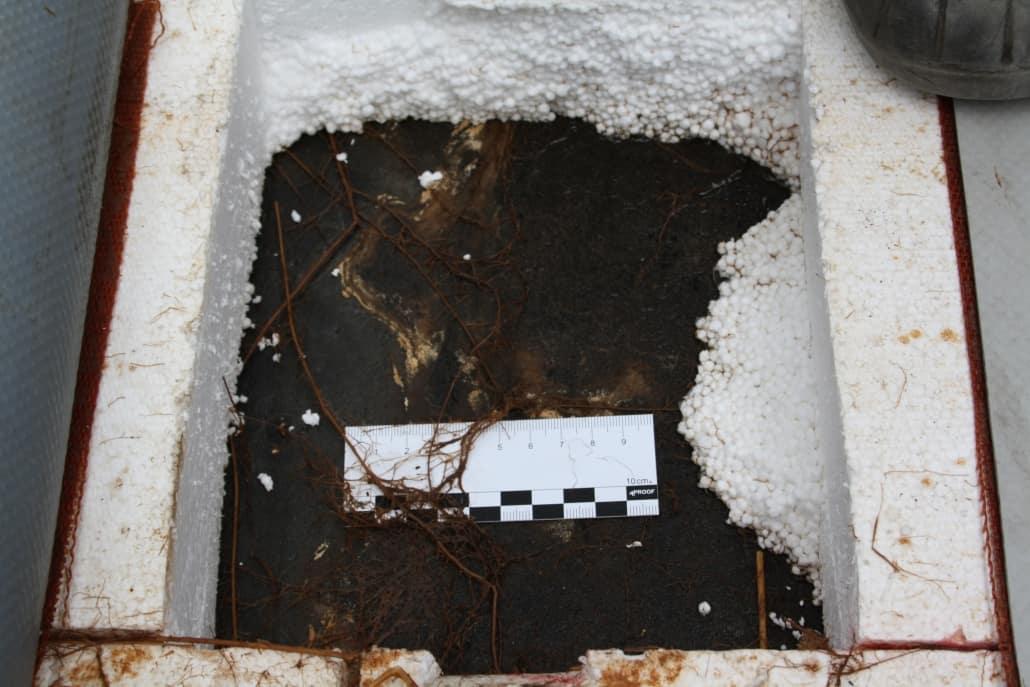 Schäden am Flachdach Gutachter für Terrassen, Dachterrassen und genutzte Flachdächer – Sachverständiger