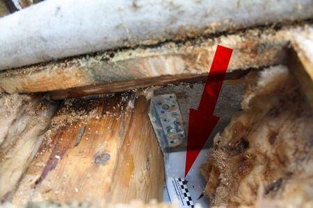 Begutachtung eines Flachdach Schadens durch Wasserdampfkonvektion